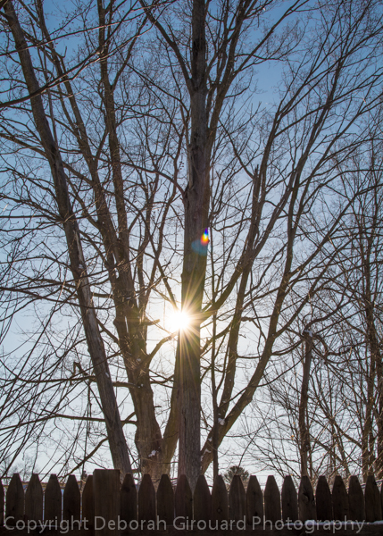 February Mornin', St. Albans, Vermont